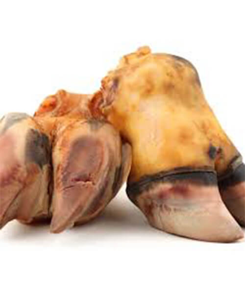 Cow Foot