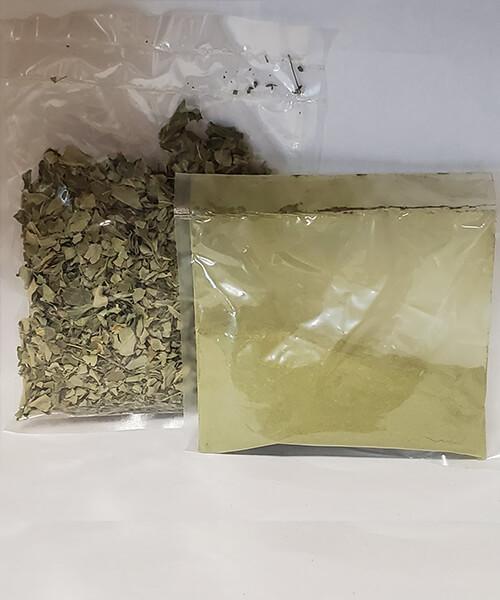 Moringa Leaves and Powder